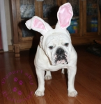 Title:Mandy Easter 2011 Views:274