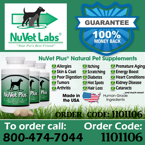 Learn More About NuVet Plus Supplement and Why I LOVE it Here!